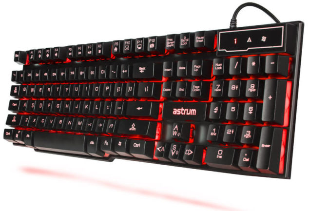 PC Gaming A Guide to Gaming Keyboard Switches